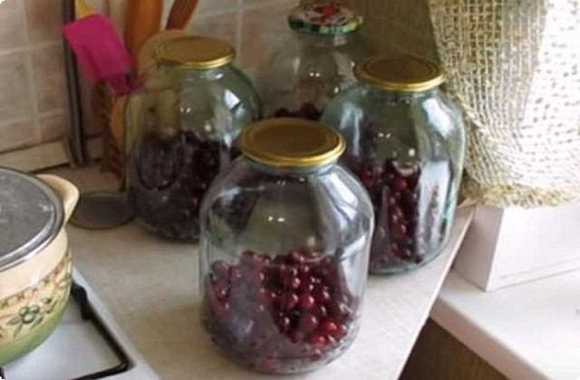 раскладываем ягоды в подготовленные банки