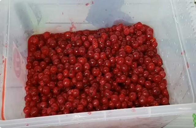 обдадим ягоды и посуду кипятком