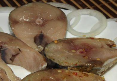 соленая скумбрия