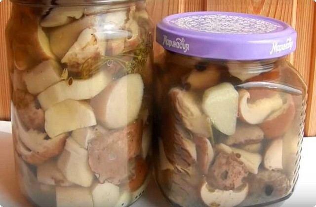 Маринованные белые грибы с уксусом и чесноком
