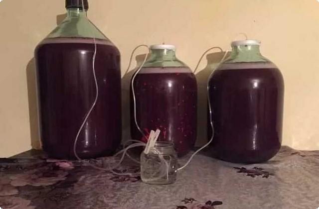 ставим бутыли под гидрозатвор