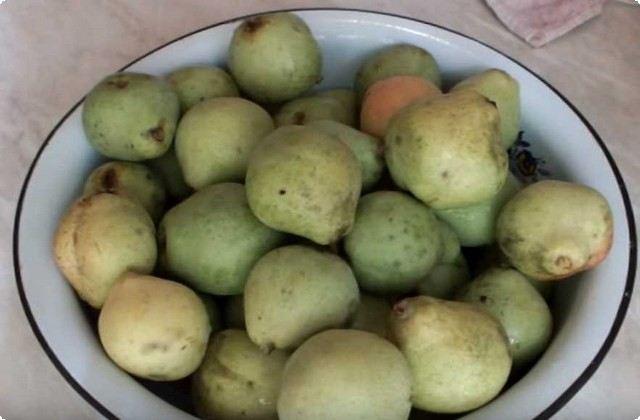 перебираем и моем фрукты