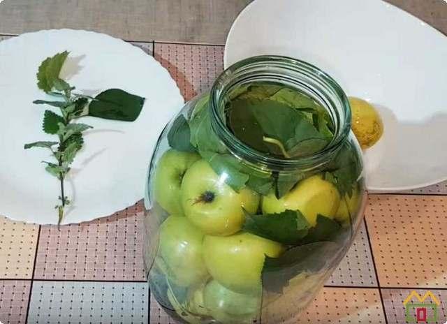 заполняем банки яблоками и листьями