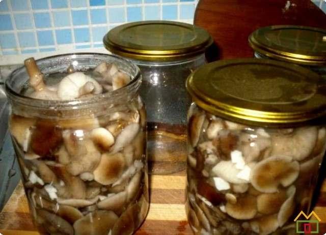 По чистым банкам раскладываем равномерно грибы и рассол